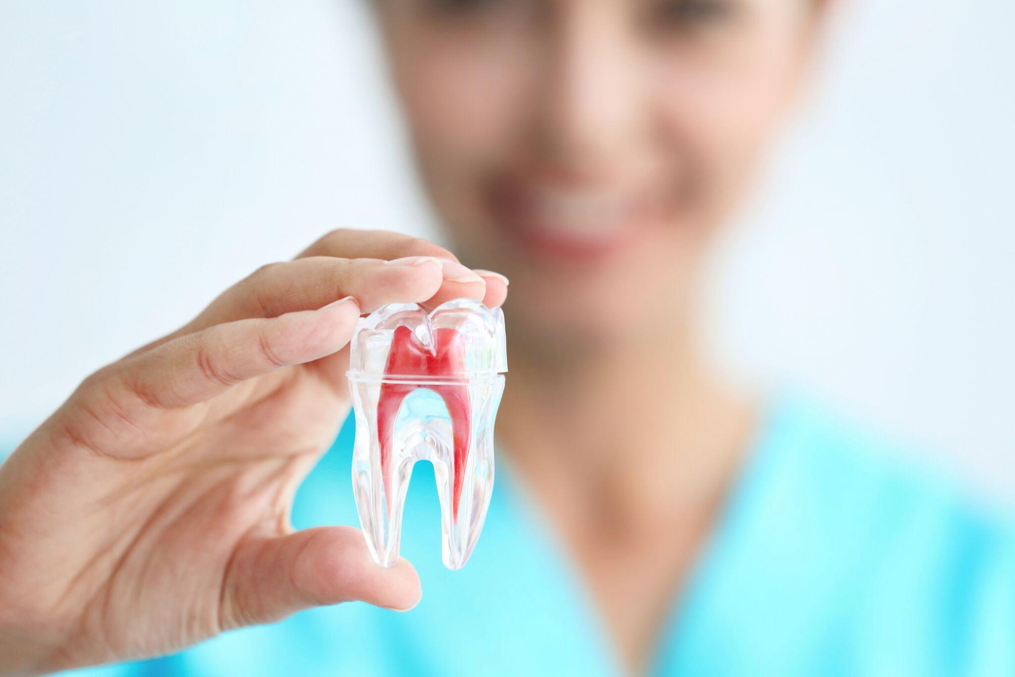 https://dentalstudioturkey.com/wp-content/uploads/2021/02/Root-Canal-Treatment2.jpg