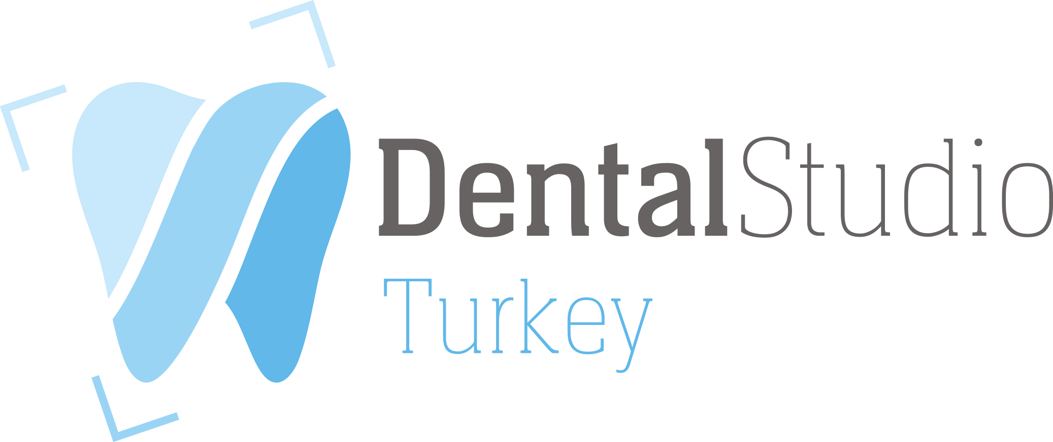 https://dentalstudioturkey.com/wp-content/uploads/2021/03/dentalstudio-logo1.png